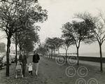 11. A family out for a stroll along the waterfront in 1