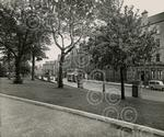 13. Perth Road From Queens College in 1956.jpg