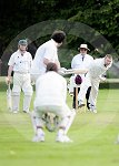 IC_Cricket Fraser Park 03.jpg