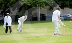 IC_Cricket Fraser Park 08.jpg