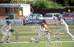Sussex v Somerset cricket day three 1.jpg