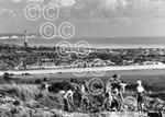 Argus Looking Back Lancing Ring fossils 1991.jpg