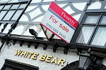 05mwhitebearforsale_n110519.jpg