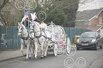 091116J April Perks with Horse and Carriage.jpg