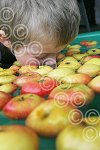 Apple Day K13660-28.JPG