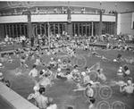 p9610 gy swimming pool 1960.jpg