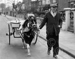 04_Archive_Four_Legged_Transport.jpg
