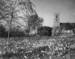 c6706 kirby bedon church 1961.jpg