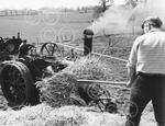 c10670 threshing at Raveningham 1973.jpg
