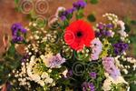 NB_Lound_Flower_Festival.03.jpg
