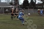 MEB_281109_Stansted FC (10).JPG