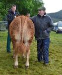 Donald Campbell with Appin champion.jpg
