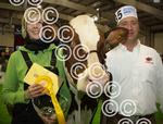 AGRISCOTsuperCow2.jpg