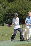 P6978-24-09SH Yth cricket.jpg
