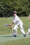 P7003-24-09SH Yth cricket.jpg