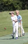 P7015-24-09SH Yth cricket.jpg