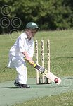 P7030-24-09SH Yth cricket.jpg