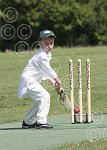 P7033-24-09SH Yth cricket.jpg