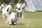 P7425-33-09SH BS Cricket.jpg