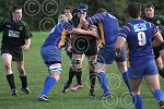 P1344-46-09SH Withy rugby.jpg