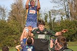 P1363-46-09SH Withy rugby.jpg