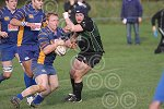 P1389-46-09SH Withy rugby.jpg