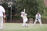 mhsp 8922-30-10TI Seaton Cricket.jpg