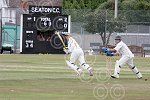 mhsp 8938-30-10TI Seaton Cricket.jpg