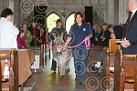 sho 8183-16-11AW Palm Sunday.jpg