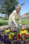 exb 0879-18-13AW Budleigh in Bloom.jpg