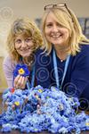 Alzheimers Forget-me-nots 2of2 RW 160208.jpg