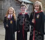 SE world-book-day-harry-potters-gorsley.jpg