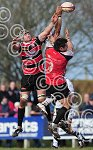 Pirates_v_Exeter_Chiefs_ppauk019.jpg