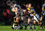 Exeter_Chiefs_v_Wasps_ppauk007.jpg