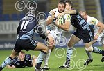 Exeter_Chiefs_v_Cardif_Blues-ppauk09.JPG