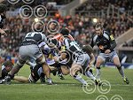 Exeter_Chiefs_v_Newcastle_Falcons_ppauk007.JPG