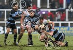 newcastle_v_chiefs_ppauk003.jpg