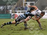 newcastle_v_chiefs_ppauk008.jpg