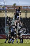 ExeterChiefs_v_Northampton_ppauk014.JPG