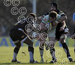 ExeterChiefs_v_Northampton_ppauk015.JPG
