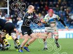 Wasps_v_Exeter_Chiefs_180212_ppauk019.jpg