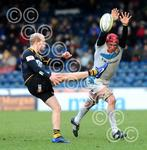 Wasps_v_Exeter_Chiefs_180212_ppauk021.jpg