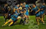 London_Wasps_A_Exeter_Braves_261112_ppauk16.jpg