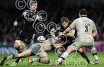 Exeter_Chiefs_v_Bath_291212_18.jpg