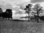 5th Green, Glasgow Golf Club, Killermon, 1950.jpg