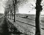 10.  Looking along Magdalen Green in 1960.jpg