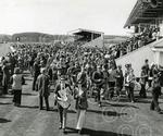 1. A day at the races - as the crowd gathered for the S