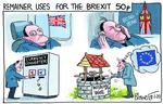 222838996_blower cartoon remainer uses for the brexit 5