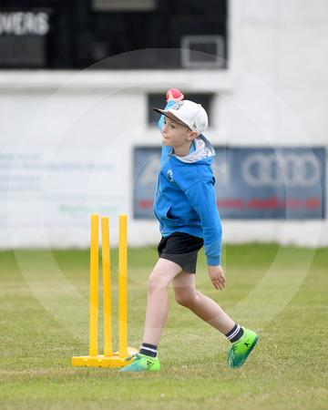 juniorcricket06062018LD_06.JPG