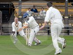 IC_cricket_northern_v_elgin_03.jpg